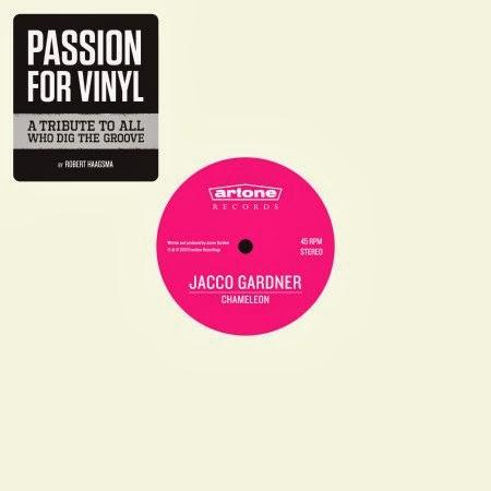 Passion For Vinyl - A tribute to all who dig the groove