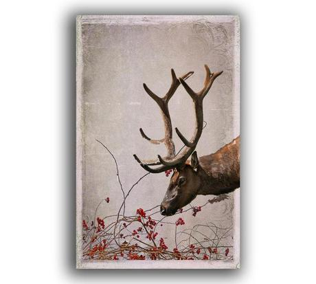 https://www.etsy.com/listing/168109595/reindeer-card-free-shipping-winter?ref=shop_home_active