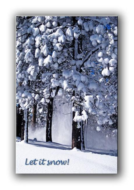 https://www.etsy.com/listing/167982193/let-it-snow-nature-holiday-card-free?ref=shop_home_feat
