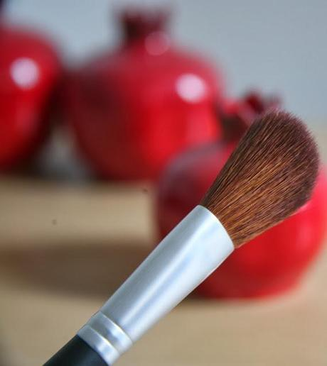 Pur Minerals Blush Makeup Brush Reviews