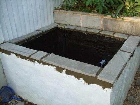 The Big Pond Build (Part 4)
