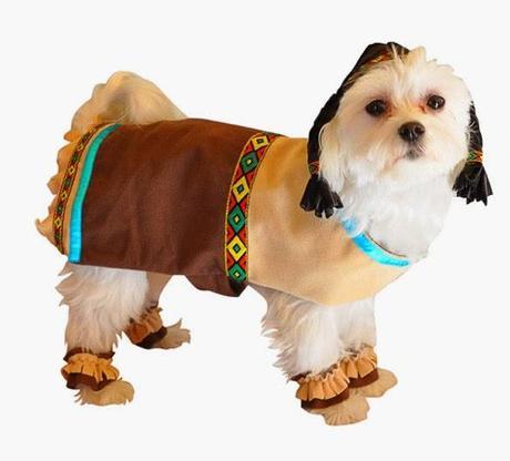 Indian Dog Collar