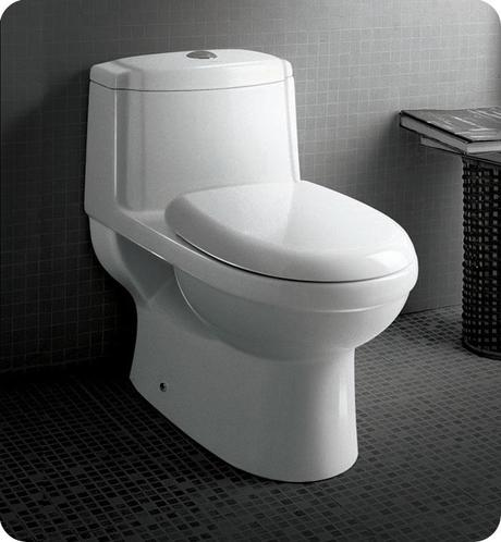 The Fresco Dorado Elongated One-Piece Toilet