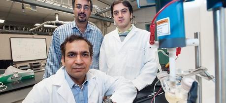 UIC researchers Amin Salehi-Khojin (seated), Bijandra Kumar and Mohammad Asadi.