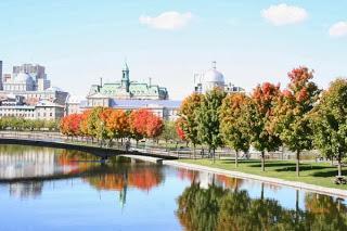 Five Montreal Restaurants for Locals