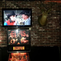 Rock N Horse Elvis Pinball and 8 Seconds