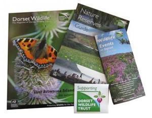 dorset-wildlife-trust