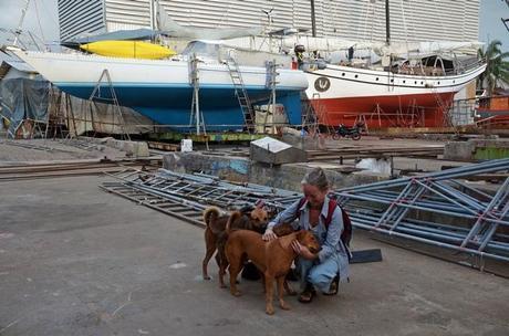 Shipyard dogs