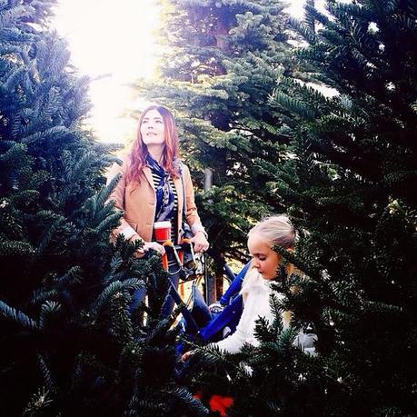 Life through INSTAGRAM : Christmas Edition