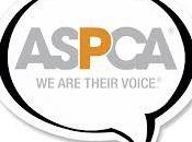 Seriously ASPCA? Can't.