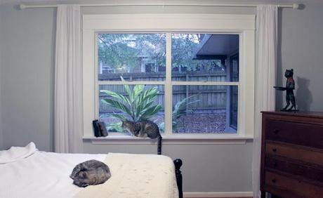 DIY: Wooden Window Frames