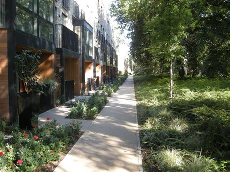 Accordia Cambridge Residential Development - Pedestrian Footpath with Retained Existing Trees