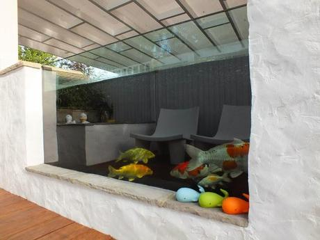 The big koi pond reveal paperblog for Koi pond viewing window