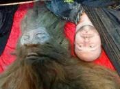 Bigfoot News Special Century Edition