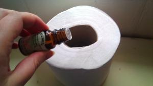DIY scented toilet paper roll