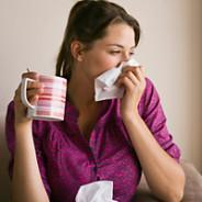 Natural Herbs to Easily Prevent Colds And Flu