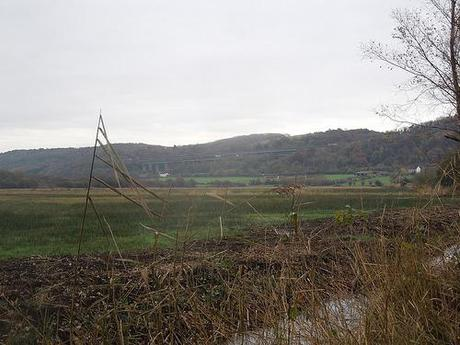The Gordano Valley