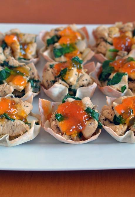 Asian Spiced Chicken in Wonton Cups