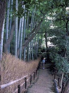KYOTO, JAPAN:  1000 Shrines and Temples