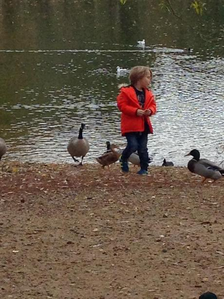 Our Perfect Day at Center Parcs
