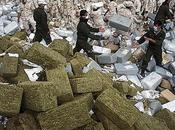 Officials Gave Mexican Cartel Permission Bring Narcotics into Chicago