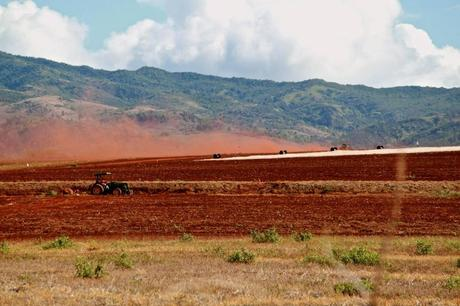 Dust drift from tilling on a Dow Agrosciences field in Kauai. Many island residents are concerned about the health and environmental impact of the large volumes of pesticides being used in fields being cultivated by biotech companies. Photo by Samuel Morgan Shaw
