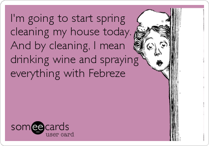 Funny Spring Cleaning Quote