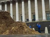 Massive Pile Poop Dumped Outside French National Assembly