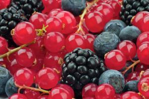 low-carb-fruit-berries