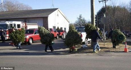 firemen move Christmas trees to road