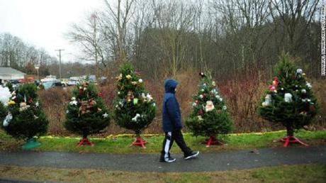SH Christmas trees4