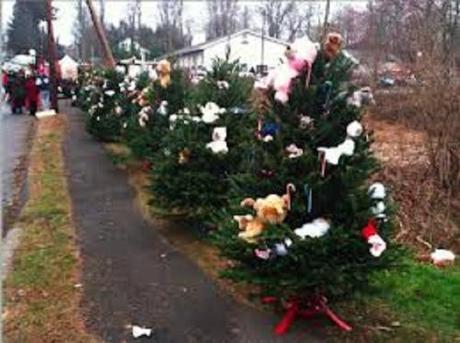 SH Christmas trees3