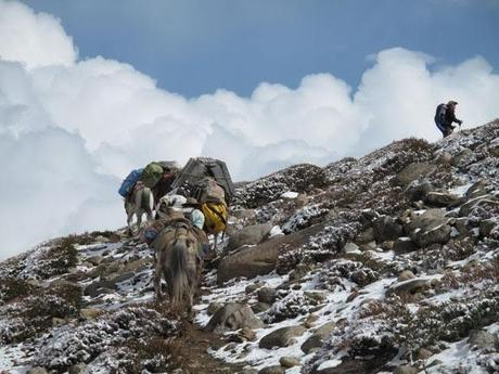 Trail Photos From Asia  