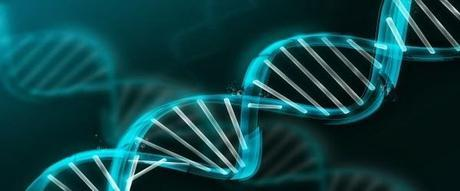 Genetic codes may not be found only in our DNA