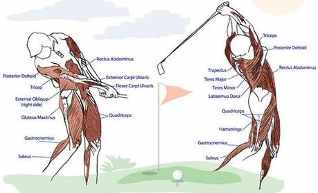 Golf Fitness Better Body Better Swing Better Game