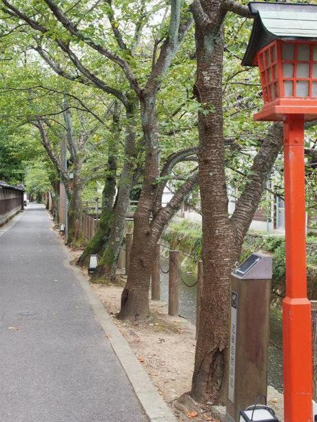 Shiga naoya at kinosaki essay