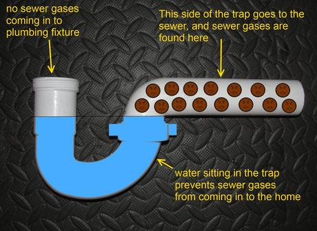 The Answer To All Of Your Basic Plumbing Questions Paperblog