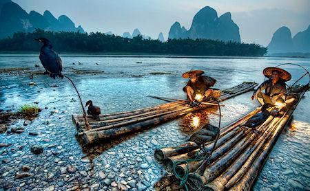 The Ancient Tradition Of Fishing With Cormorants