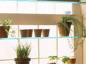 Interior Wall Garden Shelves Design Martha Stewart