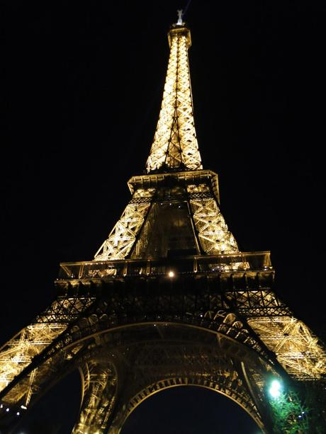 """PARIS you are PUUURTY ~ I MISS YOUR MUG ~ but not """"MY"""" FRENCH language skills"""