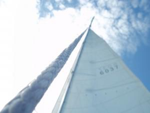 Competent Crew…Learning to Sail!