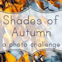 Shades of Autumn Photo Challenge