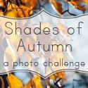 Shades of Autumn Photo Challenge