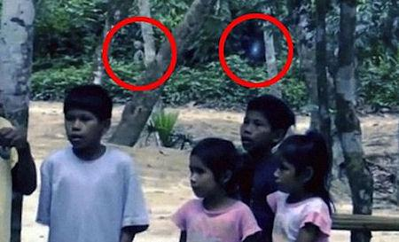 'Alien' Captured On Film In The Amazon Rainforest