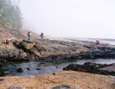 hiking-west-coast-trail