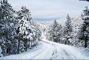 colorado christmas holiday note cards paperblog - Colorado Christmas
