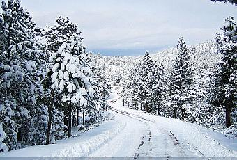 Christmas In Colorado.Colorado Christmas Holiday Note Cards Paperblog