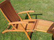 Ryan's Garden Competition: Hardwood Steamer Chair