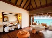 Tropical Resort Bliss