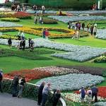Flowers are the show for Floriade 2012